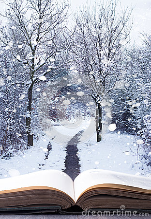 winter-woodland-book-open-background-falling-snow-36123304.jpg